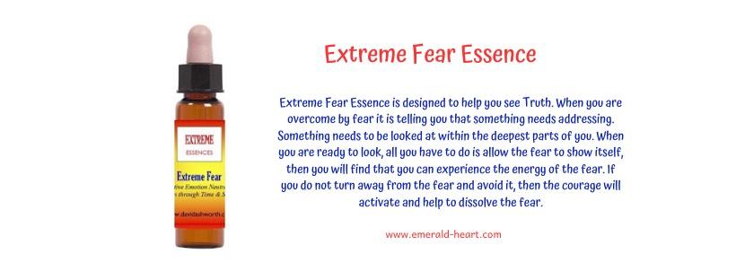 Extreme Fear Essence